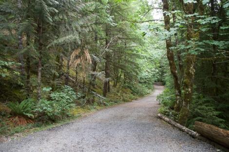 Trailhead Road
